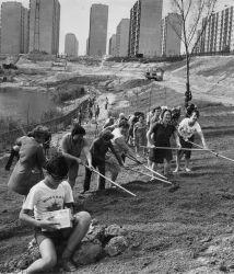 Szocialista brigád 1977.